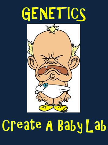 Genetics – Create a Baby Lab