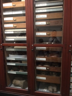 Artifacts stored at AMNH