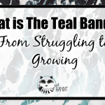 the teal bandit is a story about rising up from mental health struggles to growing a business you love.