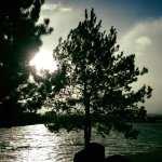 walk-with-thomas-vintage-lake-11-19-16-7