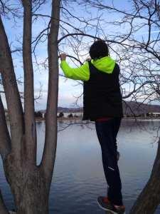Thomas in Tree at Vintage Lake 2.3.17