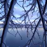Winter Wonderland Walk Vintage Lake 1.24.17 #3