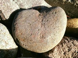 Heart Rock Close Up 2017