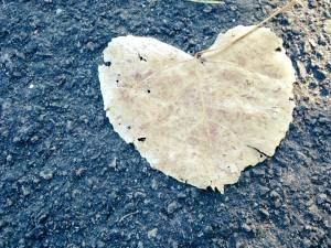 You are Loved Leaf Heart August 2017