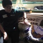 Volunteer Nevada Humane Society 10.27.17 #5
