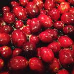 Cranberries Thanksgiving 2017 11.23.17