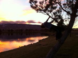 Thomas Hanging on Tree Vintage Lake Sunset 11.21.15