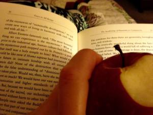 Book and Apple 1.7.18