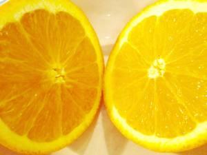 Orange 1.25.18