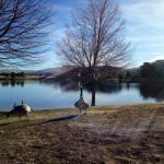 Walk with Thomas Vintage Lake 2.8.18 #1