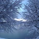 Snow Vintage Lake 3.16.18 #1