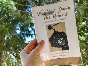 Writing Down the Bones Book April 2018