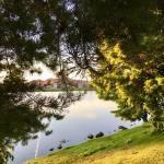 Sunset Walk Vintage Lake 6.20.18 #3