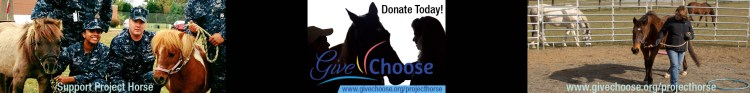 Project Horse: Give/Choose
