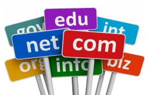 How To Choose An Attractive Domain Name For A Startup Business