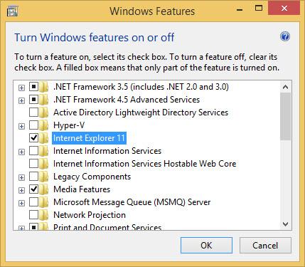 Uninstall Internet Explorer completely