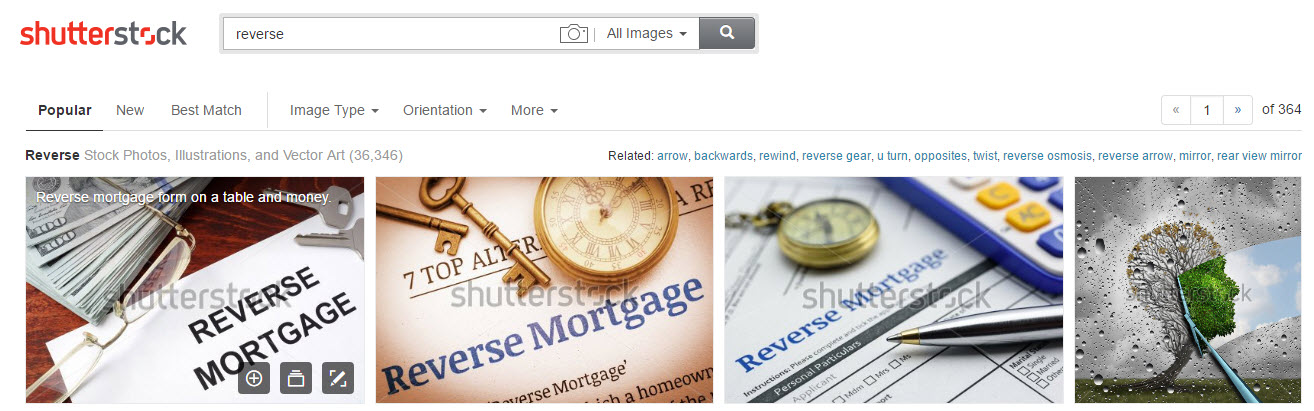 Shutterstock Image by Image Search
