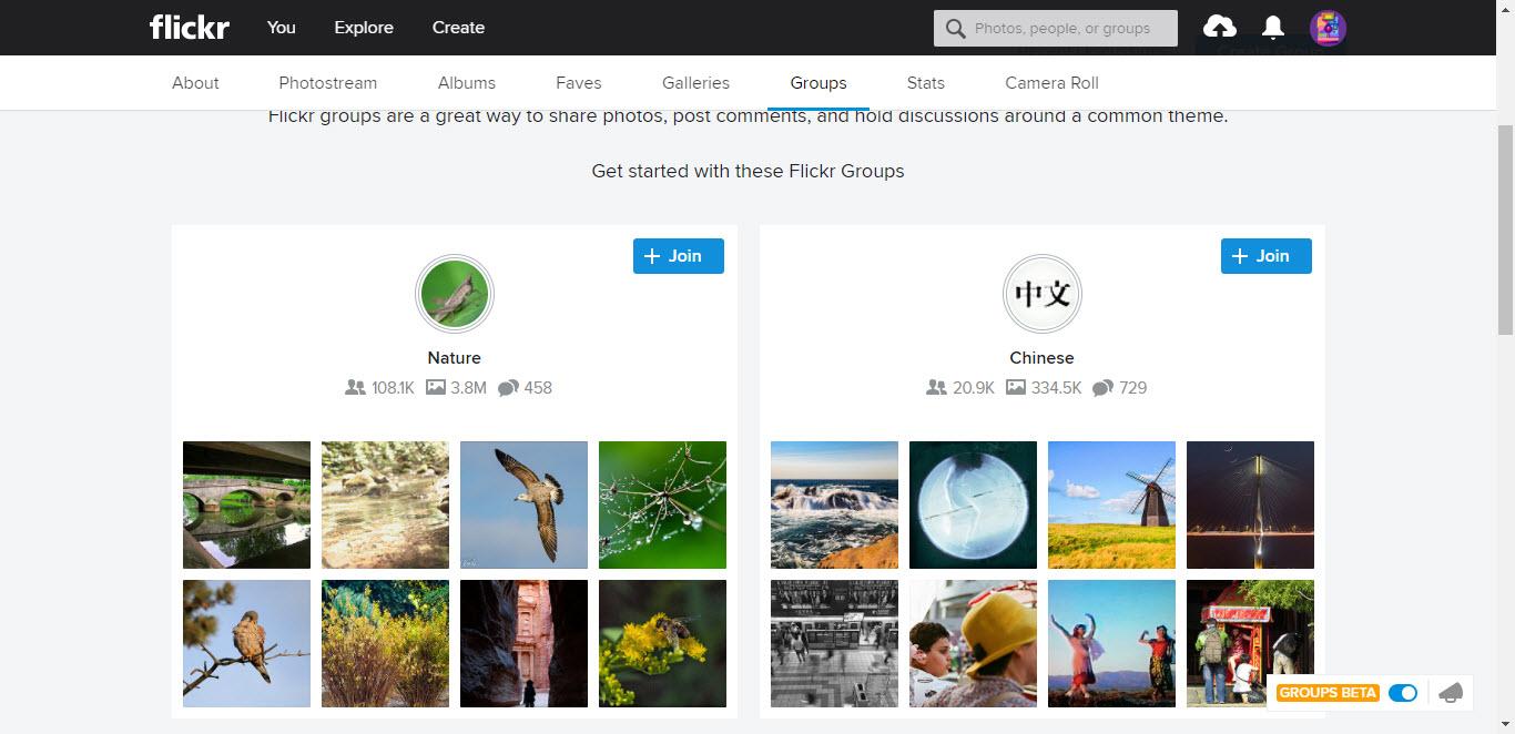 Flickr Community
