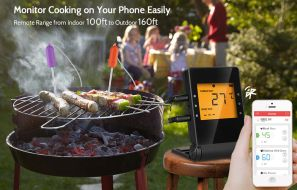 AGM Digital Meat Thermometer Review