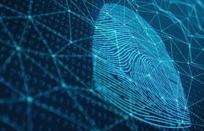 Digital Fingerprint: 3 Tips On How To Hide Your Data On The Web