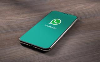Verify WhatsApp Business Account Number