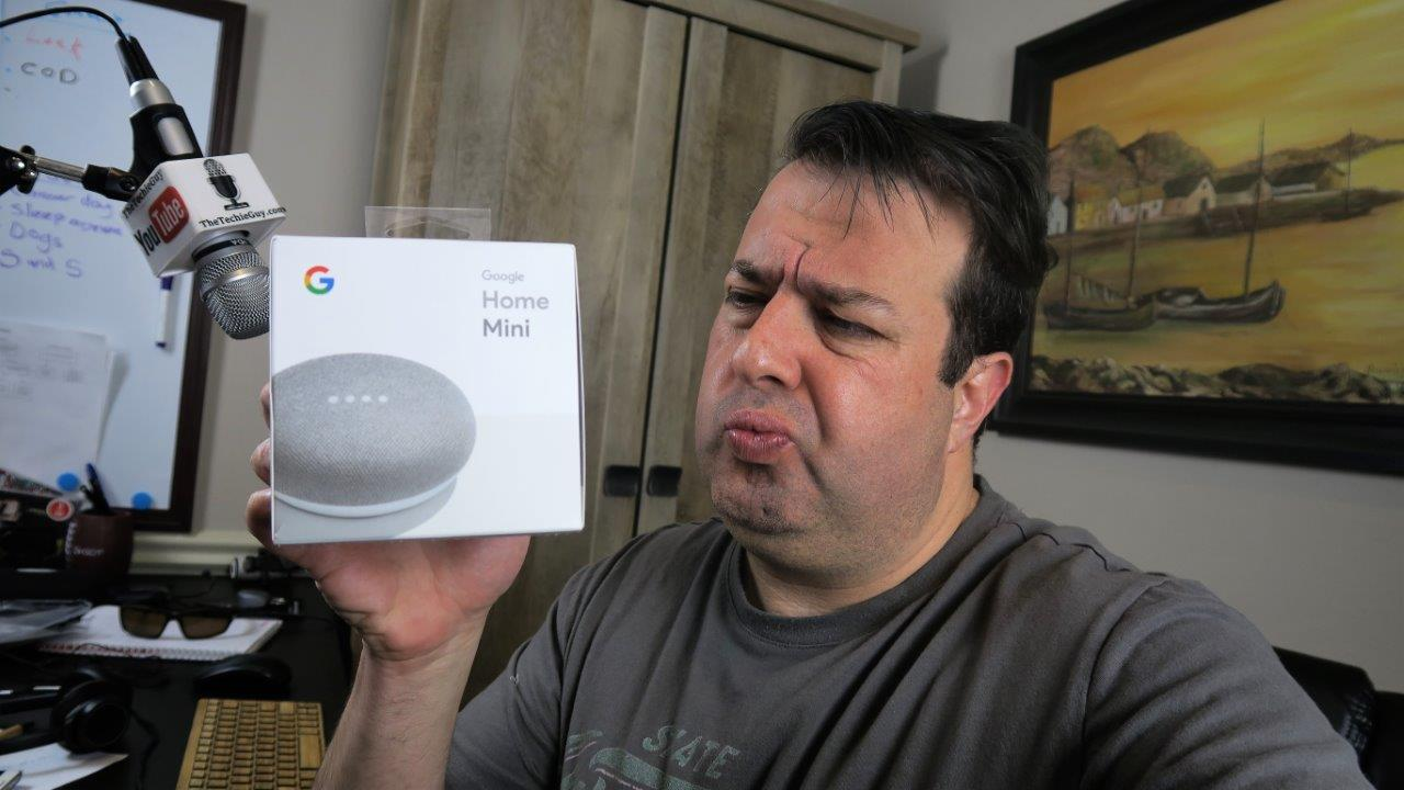 Is it worth buying the Google Home Mini Smart Speaker Home Assistant Thingie?