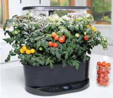 smart herb indoor garden- thetechieguy