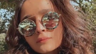 Alia Bhatt 'twins with trees' as she heads out for tiger safari with boyfriend Ranbir Kapoor, their families. See pics – bollywood