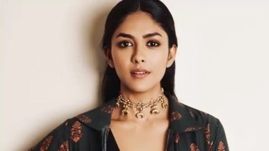 Mrunal Thakur: I've never done a comedy before, I feel it's the toughest beat to crack for an actor – bollywood