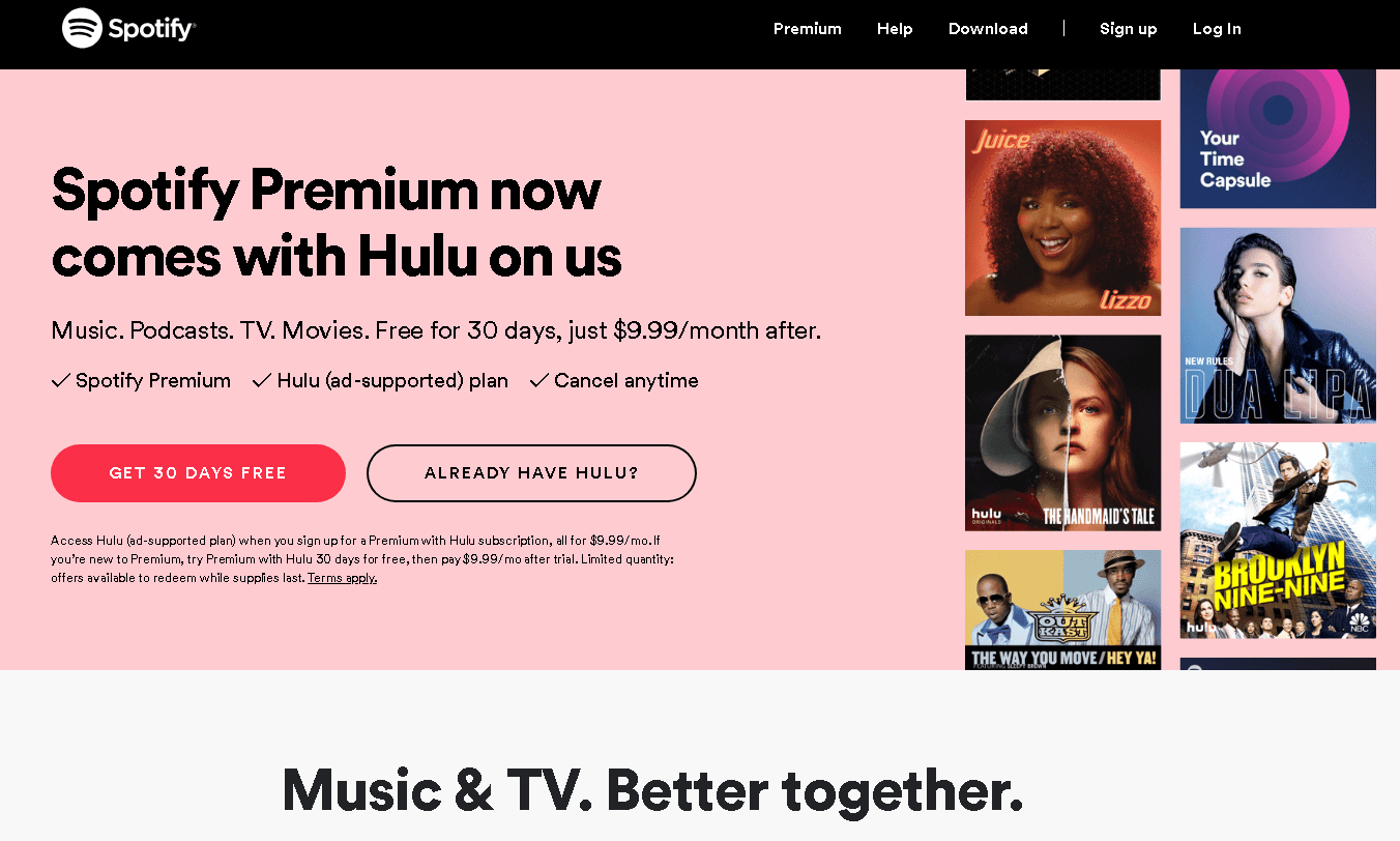 Spotify Missing the Hulu Family Plan