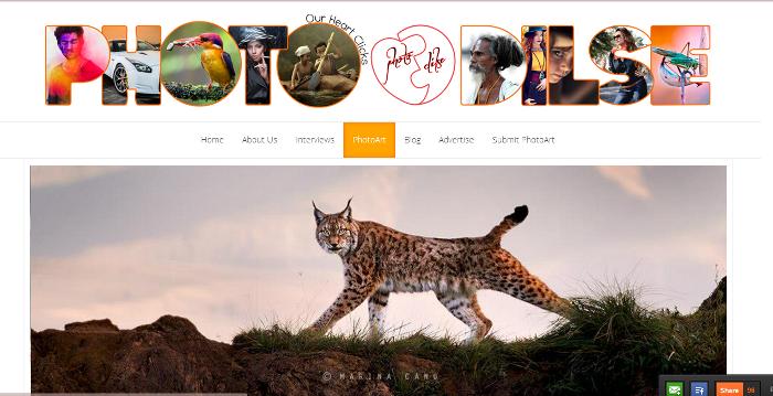 Photodilse -  A Platform for all Budding Photographers