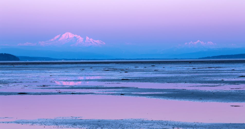 Mount Baker, Washington, reflected at boundary bay, British columbia in the blue and purple hues of twilight