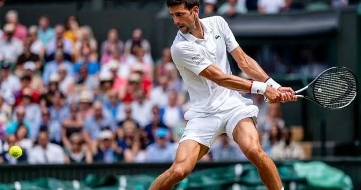 Novak Djokovic became a Wimbledon semifinalist