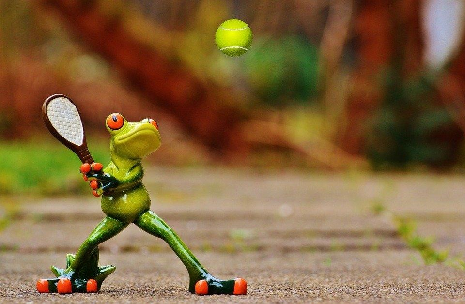 frog with tennis racket