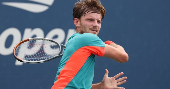 Who is David Goffin Coach? Let's find all details