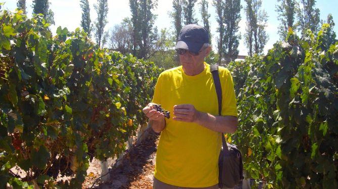 tennis-tourist-mendoza-argentina-vineyard-bill-teri-church