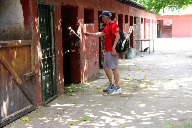 tennis-tourist-mendoza-argentina-club-hipico-tennis-horses-teri-church
