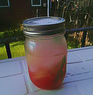 Rosemary, Watermelon, Ice, Water