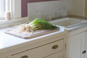 pickled ramps-11