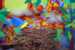 bird-nest-3d-papercut_10350850134_o