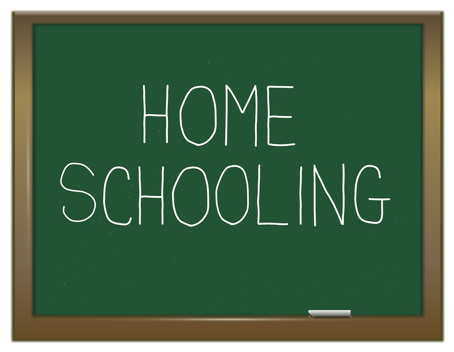 Why should we teach homeschool programming?