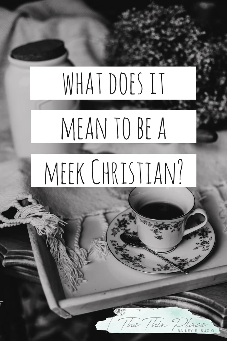 What does it mean to be a meek person? #Christianity #Beatitudes #Faith #ChristianWoman #ChristianLiving