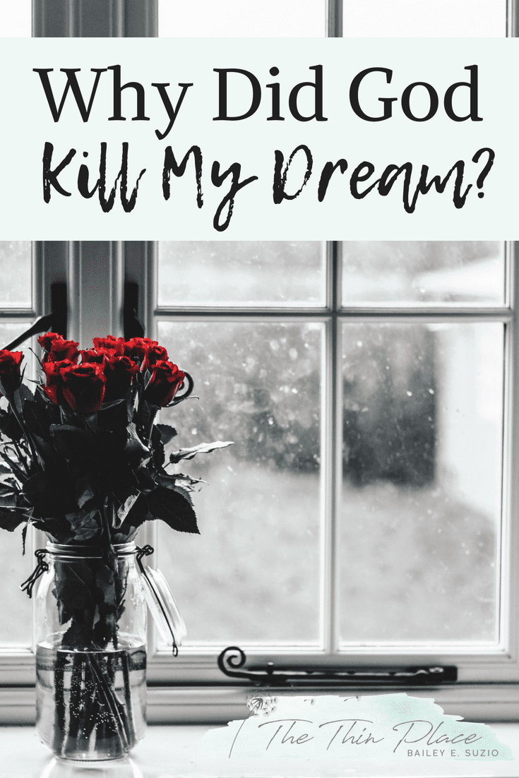 Why Did God Kill My Dream? #infertility #christianwoman #christianity #faith #devotional #hope