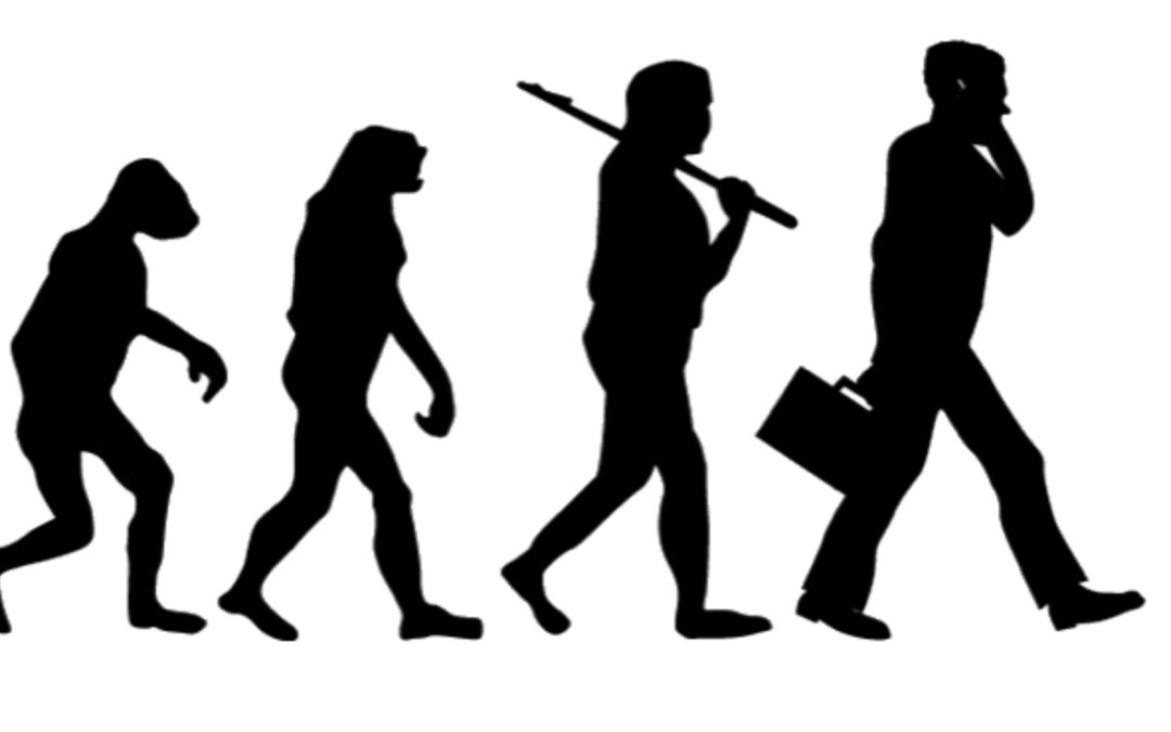 consulting career evolution