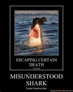 demotivational-posters-misunderstood-shark
