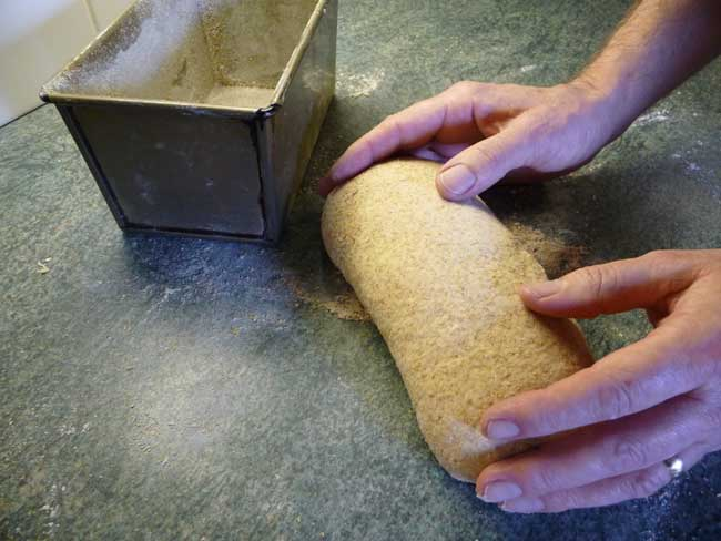 shape dough 2