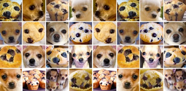 AI can't tell the difference between a chihuahua and a blueberry muffin