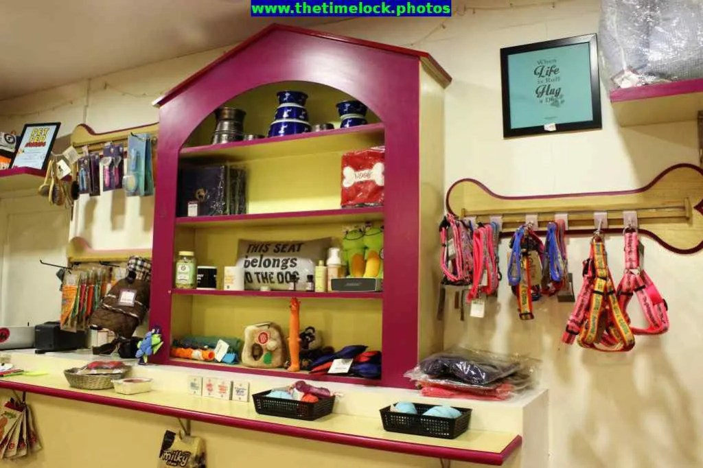 pet accessories on sale