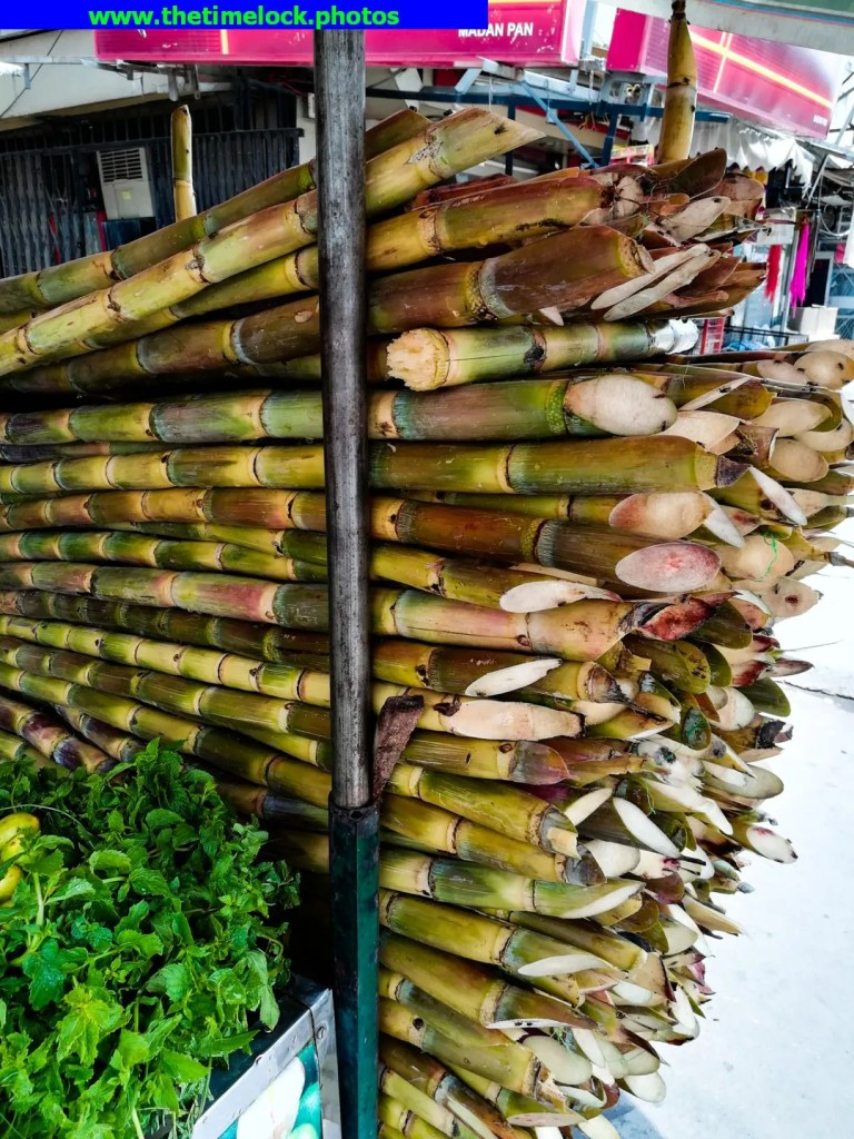suger cane juice in New Delhi
