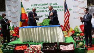 Ethiopian Airlines, USAID partner to source food from local farmers for in-flight meals